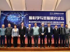 北京国际学术交流季——脑科学与类脑研究论坛举办