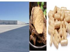 大芸及中草药系列医药生产加工产业园建设项目