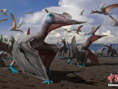 中科院团队揭秘亿万年前翼龙足迹