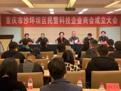 沙坪坝区重庆市科技型企业突破1000家大关